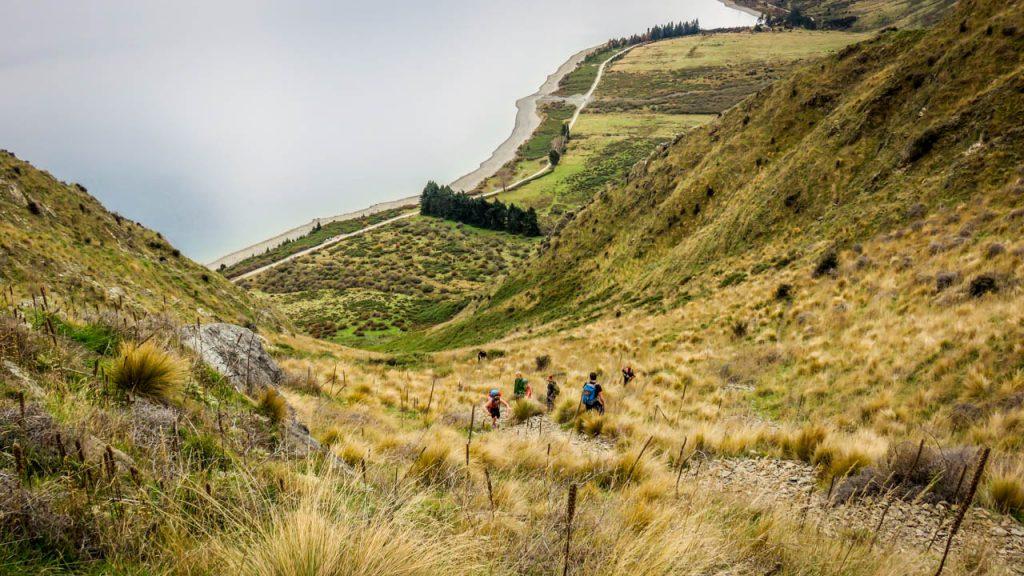 Steiler Aufstieg am Breast Hill Track