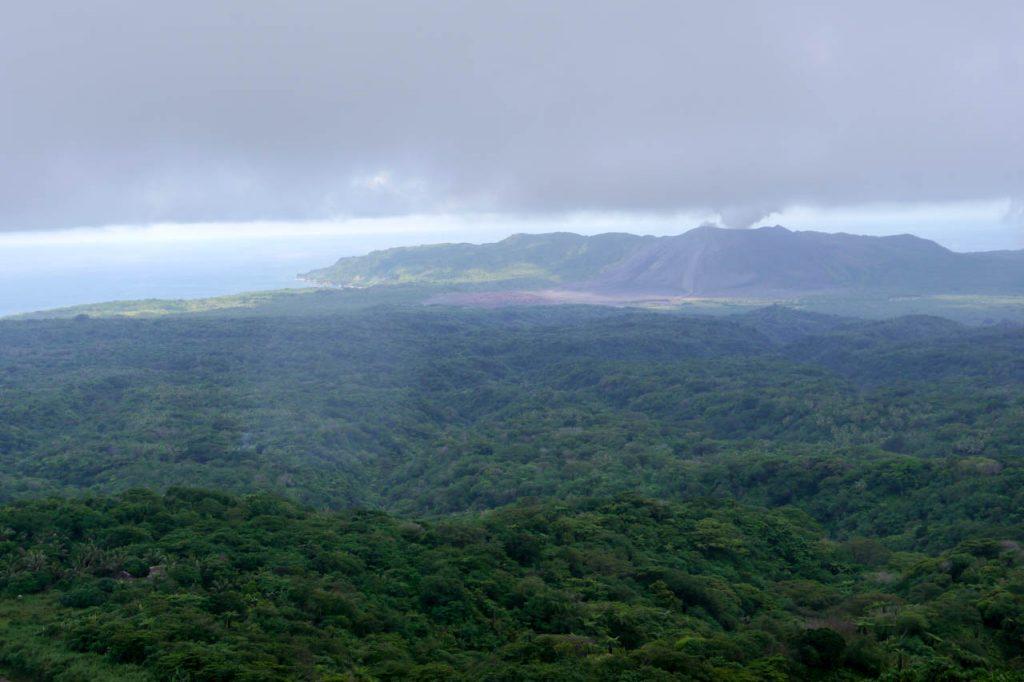Dichter Wald vor dem Vulkan